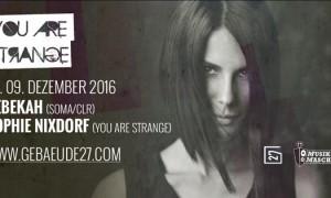you-are-strange-2016-12-rebekah-sophie-nixdorf